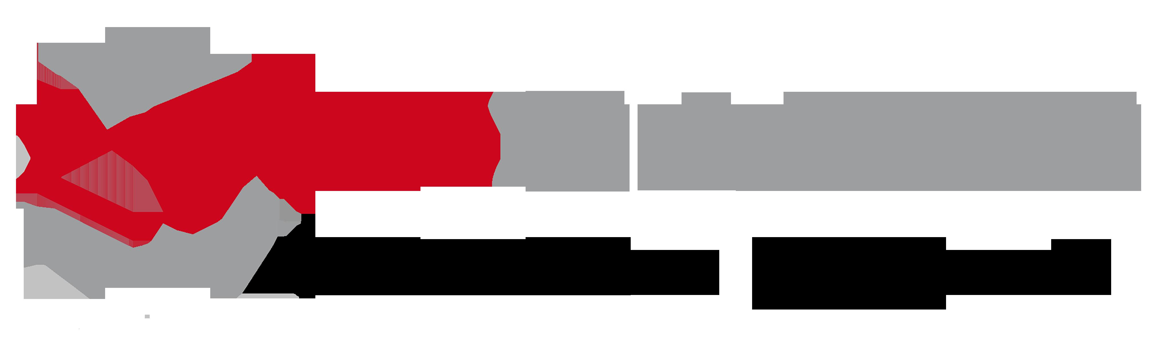 LT_Cases_Vektor